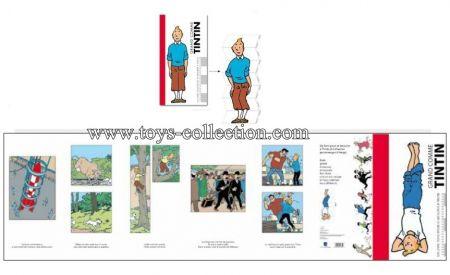 Toise Tintin yoga