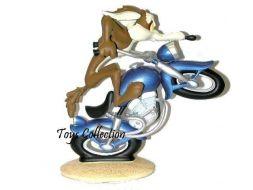 Coyote à moto