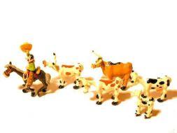 Le Cow boy et le troupeau