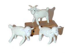Moutons du Petit Prince