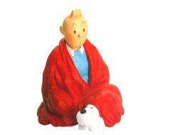 Tintin tailleur
